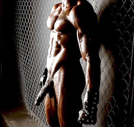 Celeb Naked Women Bodybuilder Pics Pictures