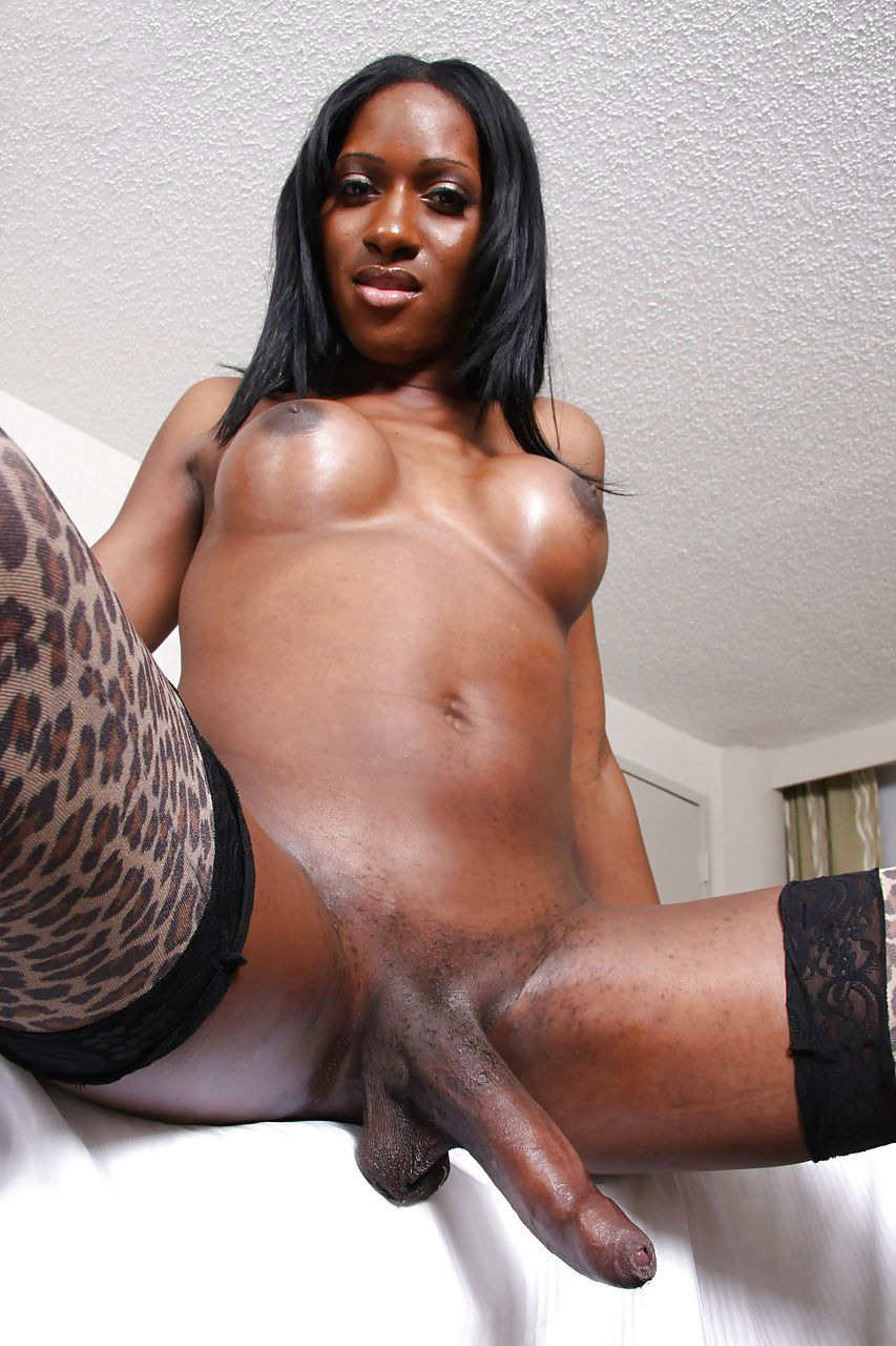Xvideos black shemale