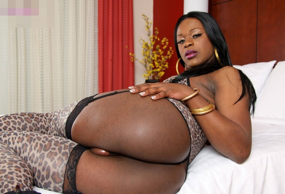 Big booty black shemale wants to be fucked good