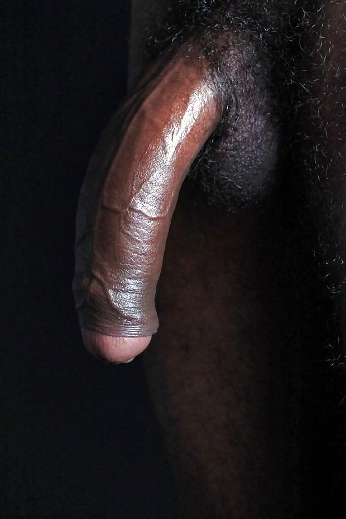 Самые большие члены черный — img 3
