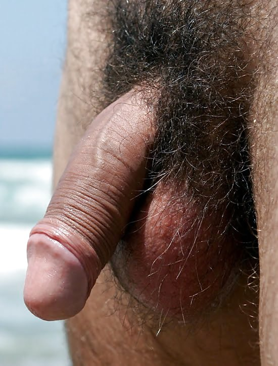 Thick Hairy Cock Close Up