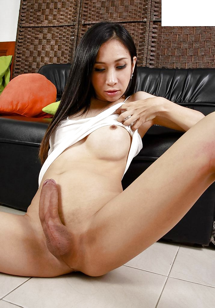 Ts lily transexual asian, transgendered ladies