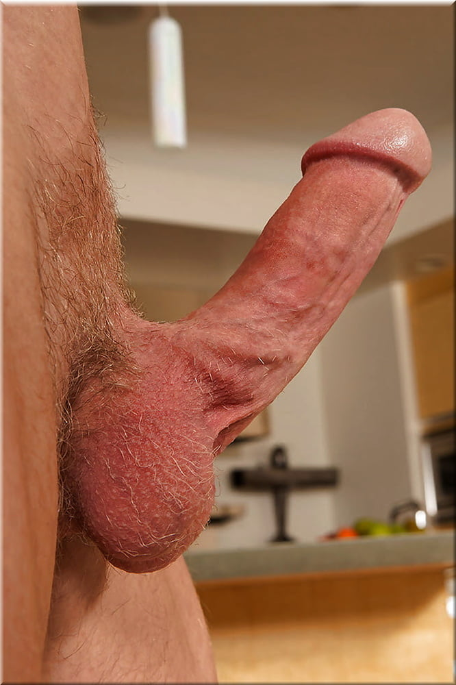 Fully Erect Penis