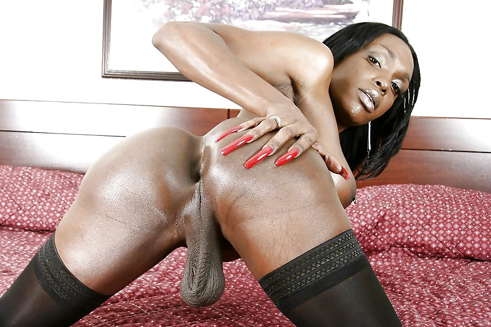 Bondage tease black shemale butt hole videos