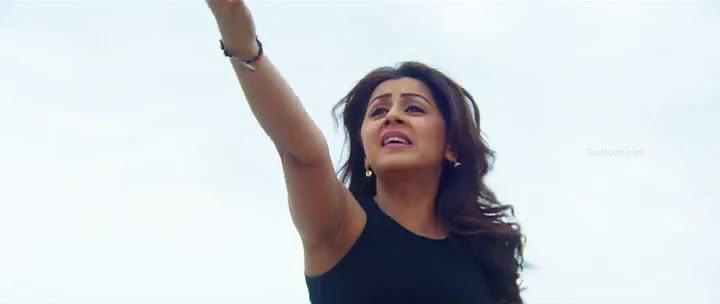 Indian actress huge boobs-7505