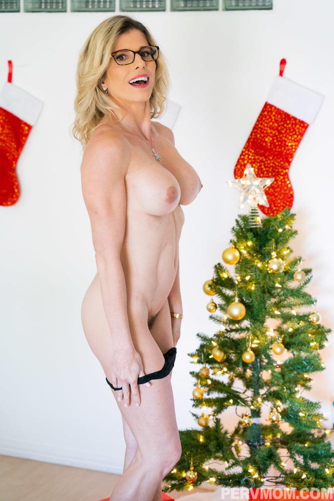 A Bad Milfs Christmas
