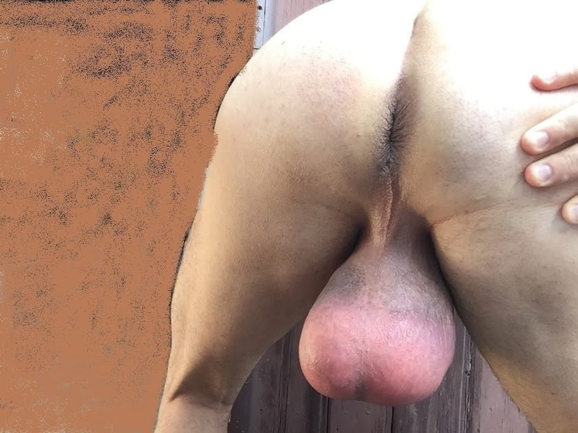 I ll show your balls up your ass