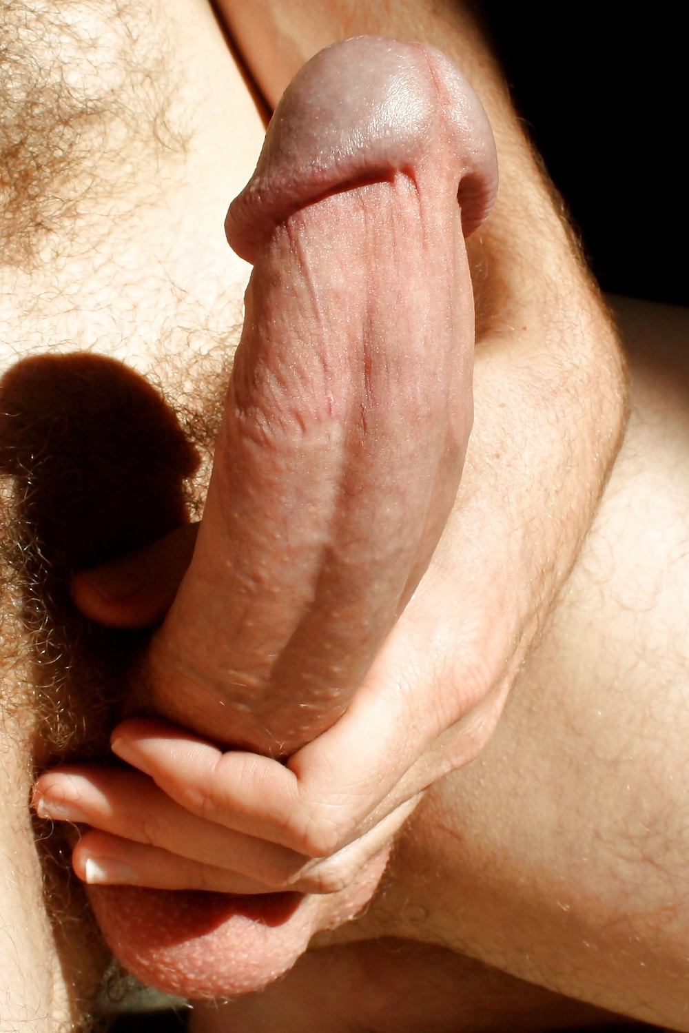 pics-of-lengthiest-dick