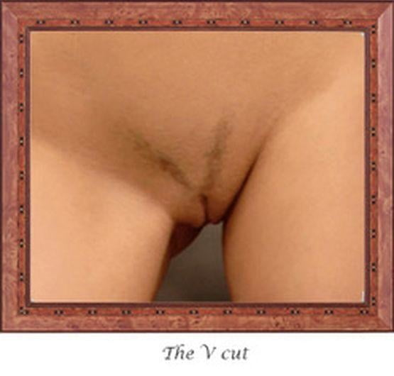 Hairy styles - 12 Pics