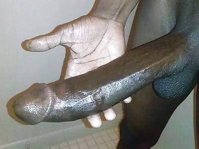 One piece hentai tube