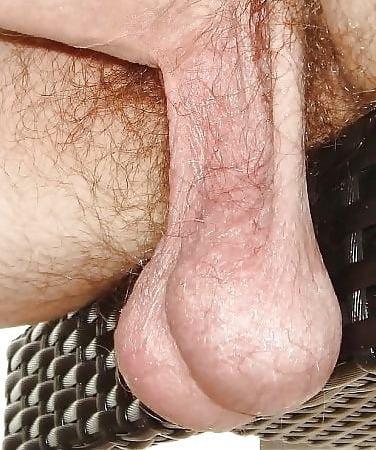 Free hd porn large