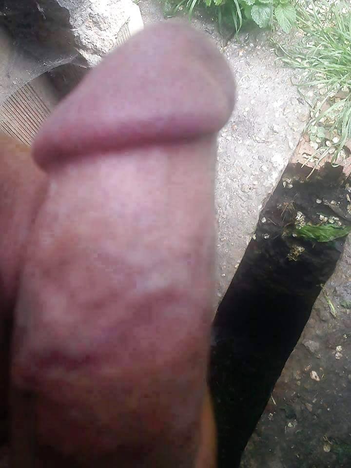 Penis bilder com