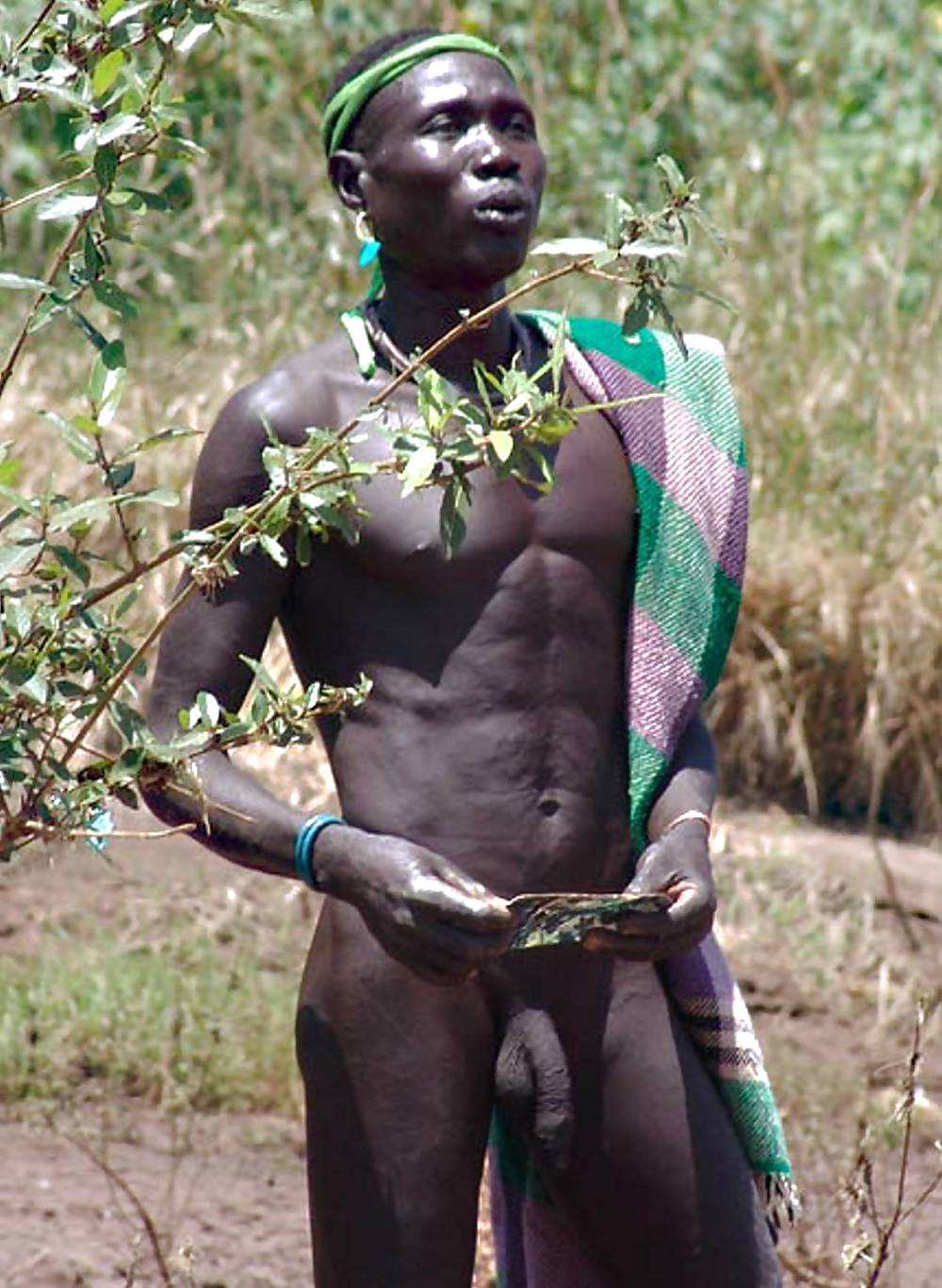 Black Cock Tribes