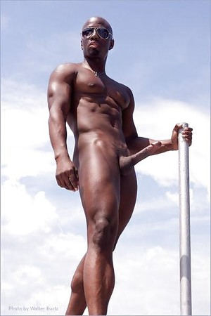 studs Gay hung