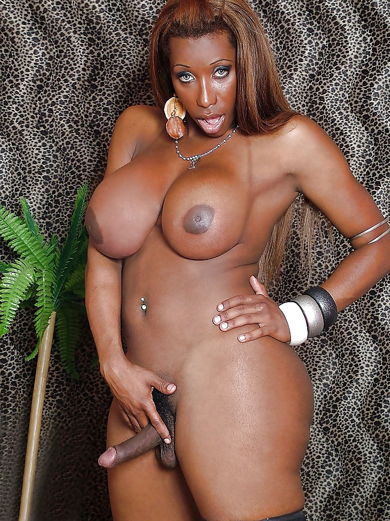 ebony-transexual-porn-vids-sex-with-other-couples-stories