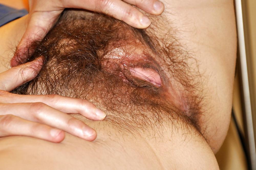 Качественные фото волосатой пизды — photo 1