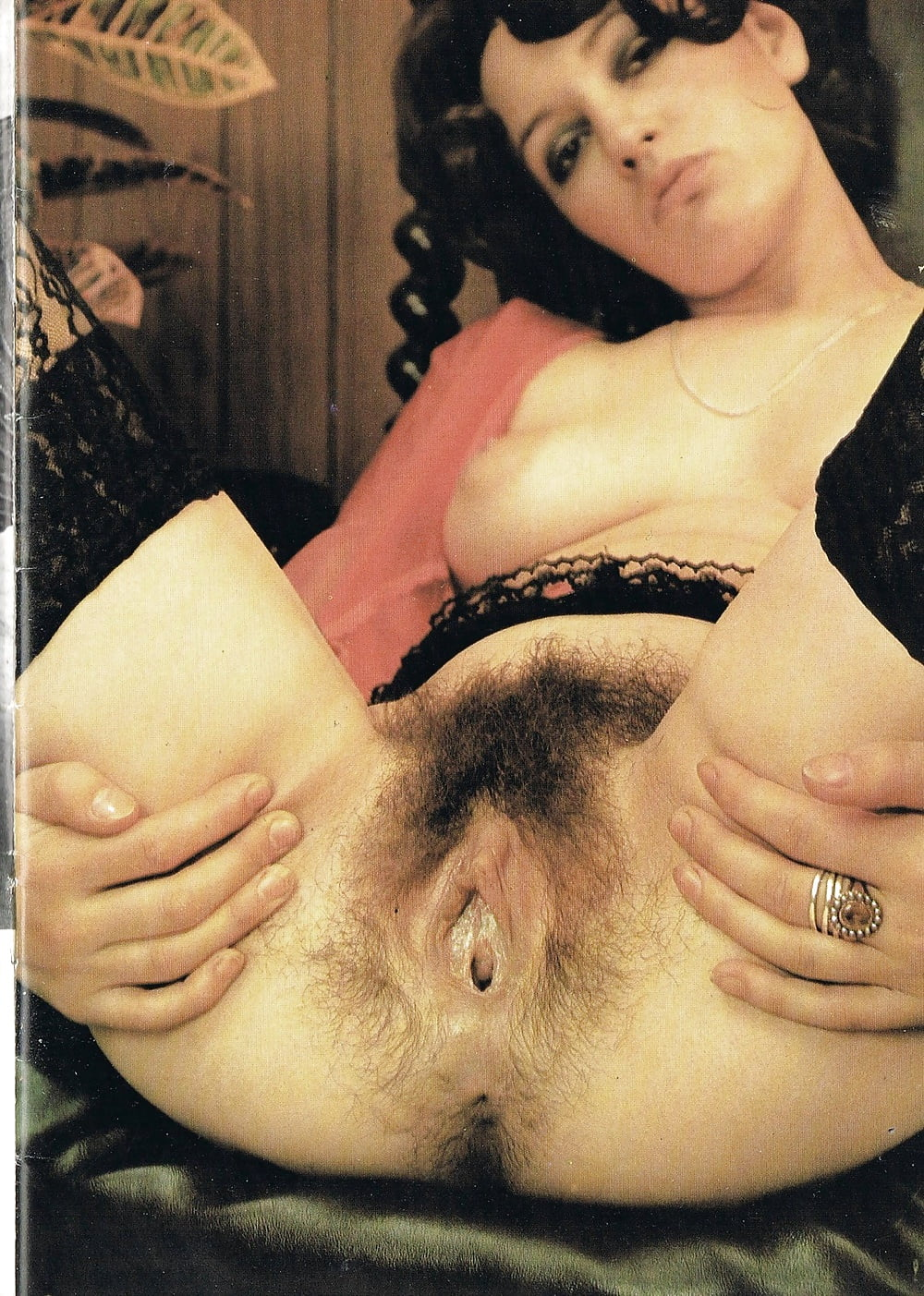 Classic hairy pussy retro hairy babes