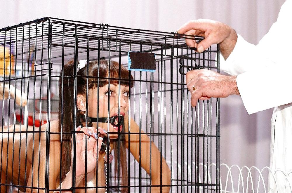 Human pet bondage